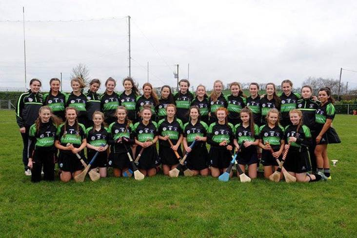 Dublin school captures first senior camogie title
