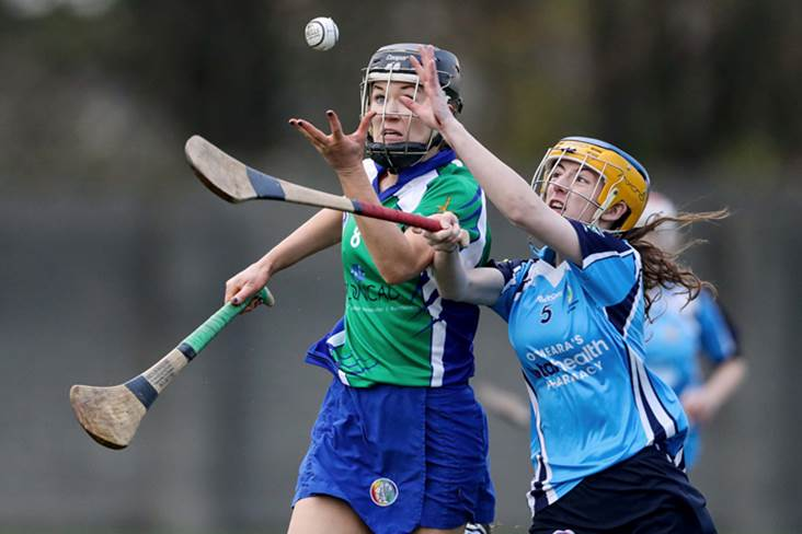 Camogie: Johnstownbridge make it two-in-a-row