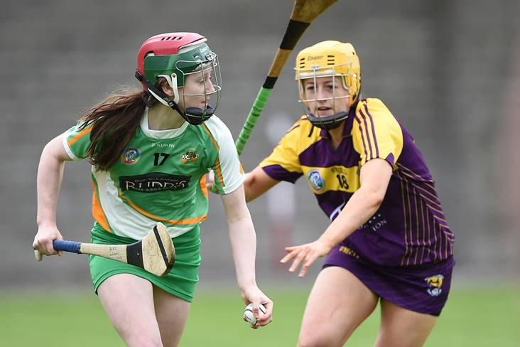 Camogie: Offaly maintain perfect start with comprehensive defeat of Wexford